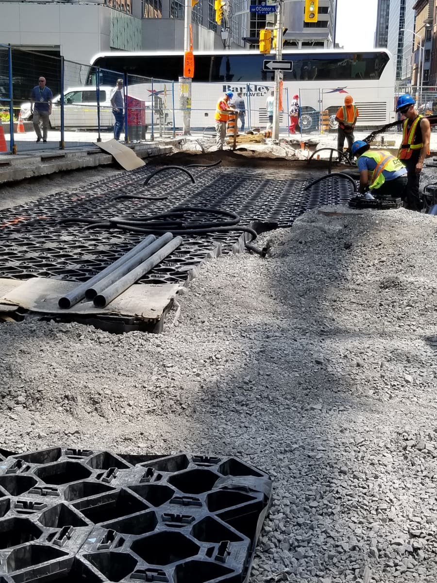 D&G Landscaping crew installing soil cells on Queen Street