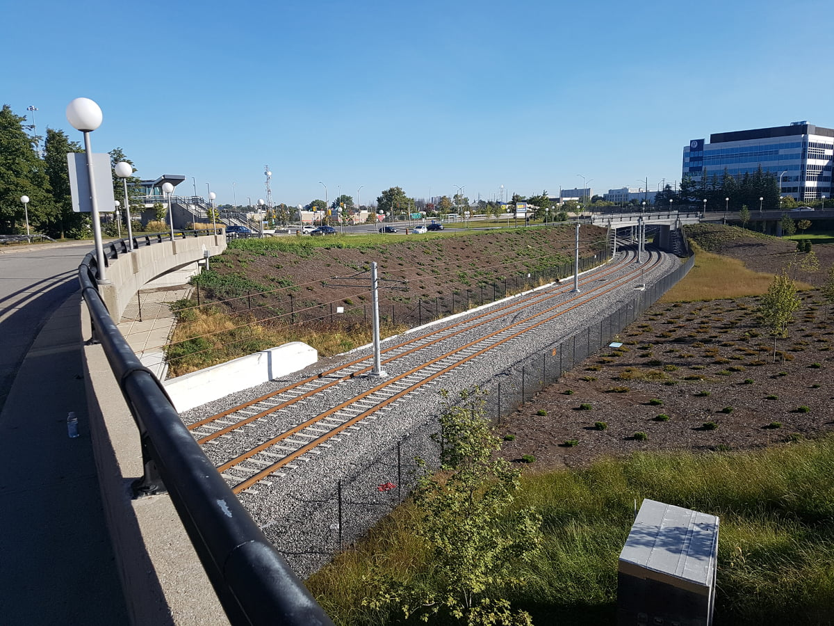 Installed plant material along the light rails tracks at the Tremblay OLRT Station